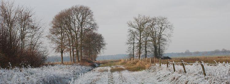 Winterwandelweg